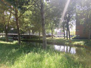 Nederlof Centrum Almere