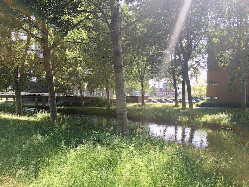 Nederlof centrum Almere groen rondom